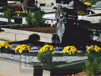 Vienkartinis arba proginis kapo tvarkymas